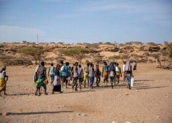 OIM: se necesitan 45 millones de dólares estadounidenses para la Respuesta a Migrantes 2018-2020 en el Cuerno de África y Yemen