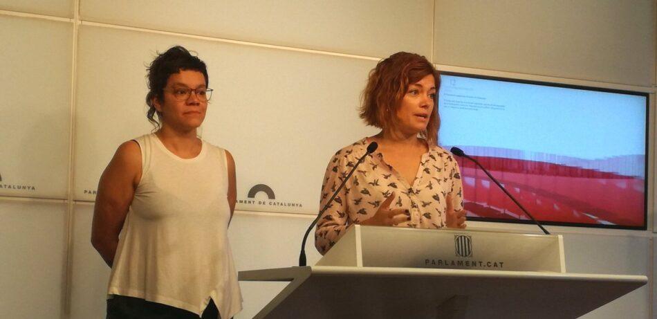 """Elisenda Alamany urgeix a """"desencallar definitivament"""" la situació sobre la suspensió dels diputats"""