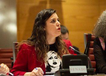 IU lleva al Senado el futuro de la plantilla de Vestas