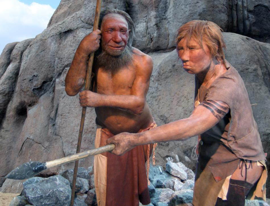 Los pulgares de los neandertales se adaptaron para sujetar herramientas con mango