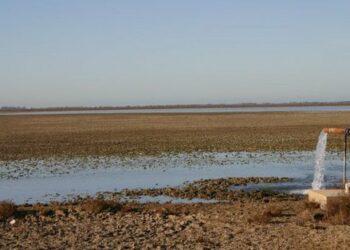 EQUO urge a proteger a los agentes medioambientales en Doñana