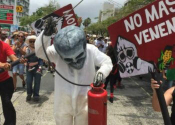 """Chile. Amnistía Internacional: """"La violencia contra defensores del medio ambiente ha pasado los límites aceptables"""""""