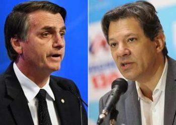 Cinco puntos separan a Haddad de Bolsonaro, según Vox Populi