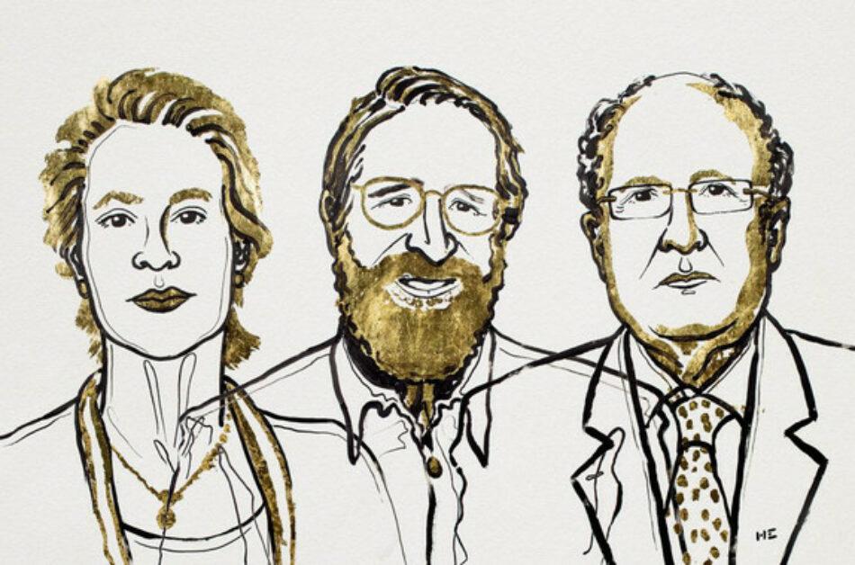 Nobel de Química para los 'directores' de la evolución proteica