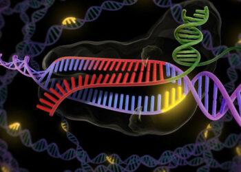 Del deseo a la realidad: la edición genética (aún) no está preparada para tratar a pacientes