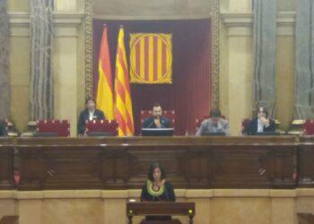 """Susanna Segovia: """"Hem de garantir la protecció de les persones que es posen en risc per denunciar la corrupció"""""""
