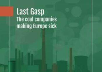 «Endesa debe cerrar inmediatamente sus térmicas por ser de las más contaminantes de Europa»
