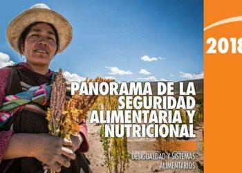 Desigualdad genera pobreza y desnutrición, asegura ONU