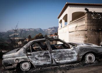 ¿Un año (casi) sin incendios? Greenpeace advierte de que los buenos datos no pueden llevar a la inacción