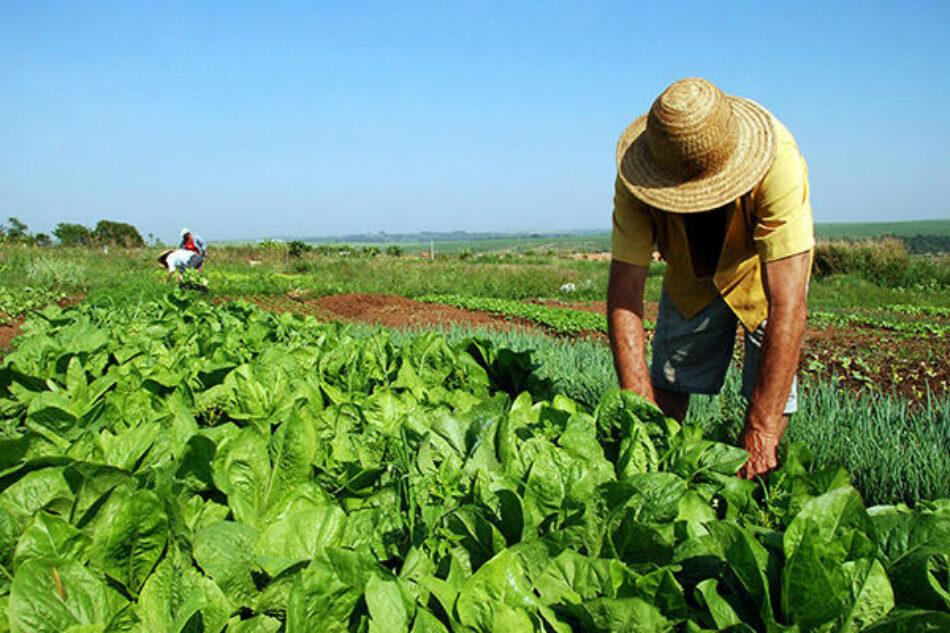 Gobierno de Brasil da marcha atrás a la decisión de suspender la reforma agraria