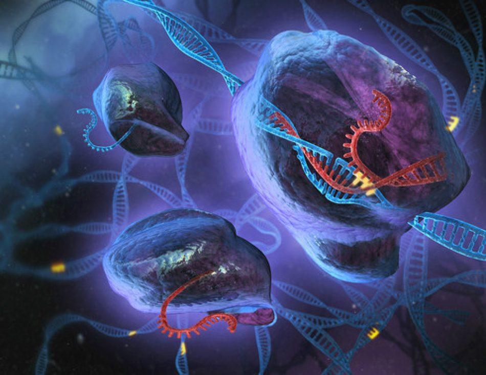 Científicos diseñan un nuevo sistema CRISPR para la edición del ADN