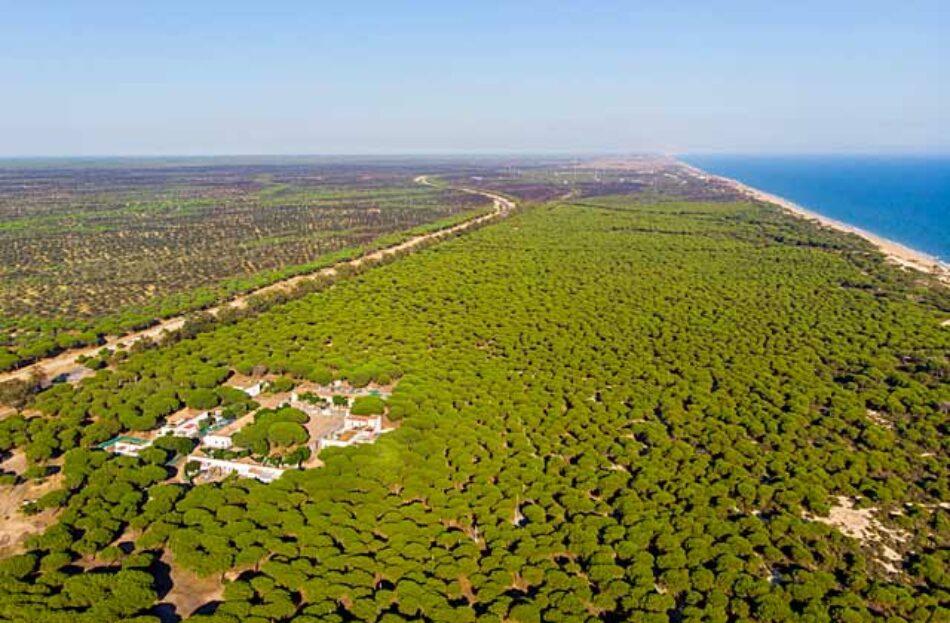 EQUO tratará de impedir por todos los medios la materialización de una autovía Huelva-Cádiz, que atravesaría el Parque Nacional de Doñana