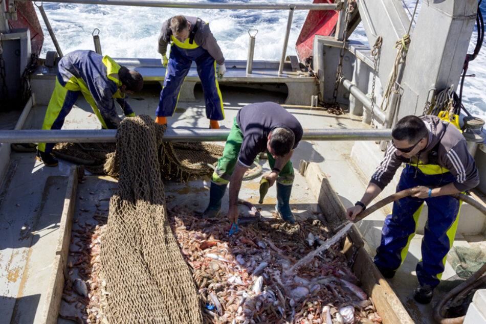 El proyecto RepescaPlas continuará en su segunda anualidad buscando una nueva vida a los residuos recuperados del mar