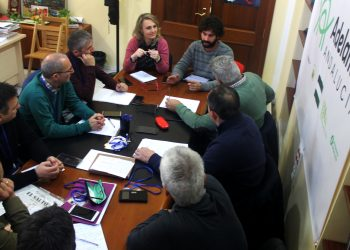 Participa Sevilla e IU exigen a Espadas que empiece a aplicar ya las medidas acordadas con el taxi para evitar la competencia desleal de las VTC
