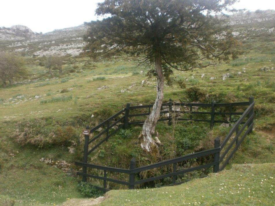 Se presentó desde Asturias una nueva denuncia en la Querella Argentina que pide la exhumación del Pozu Funeres