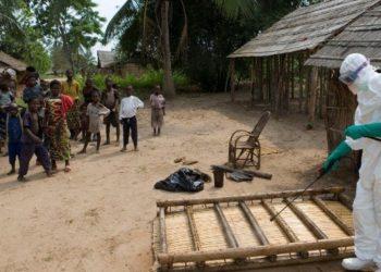 Reportan 505 muertos por brote de ébola en la RD del Congo