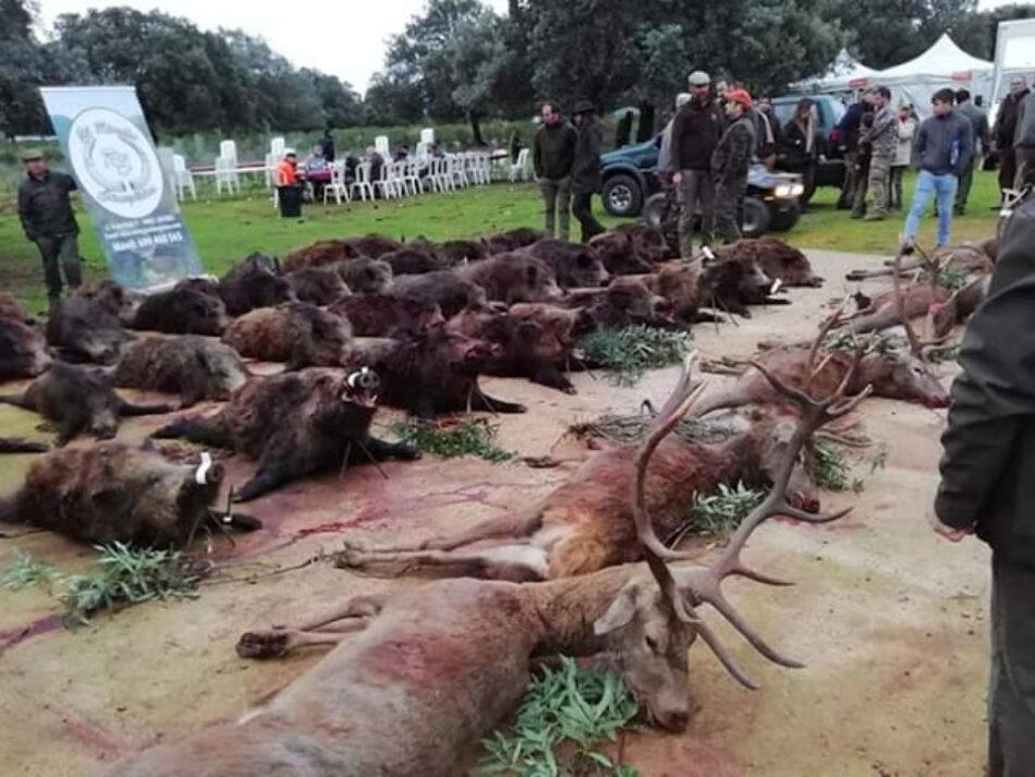 Alarma ante la decisión de  la Junta de Extremadura de apoyar con dinero público la presencia de cazadores en los colegios para dar nociones de educación ambiental
