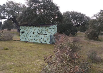 Ecologistas Extremadura critica las acciones reiteradas de caza en el Parque Perirubano de Moheda Alta