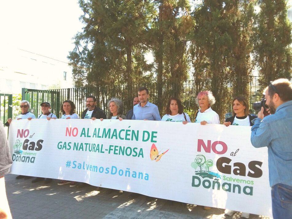 Salvemos Doñana confía en que el Parlamento Europeo recomiende al Estado la cancelación definitiva del proyecto Marismas
