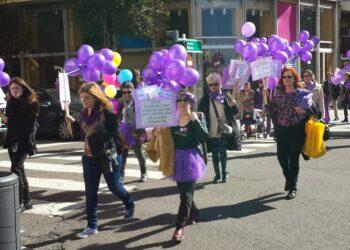 Izquierda Unida de toda la provincia de León se suma a la huelga feminista del 8 de marzo