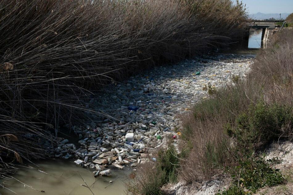 Greenpeace se moja en el Segura contra el 'Maldito Plástico'