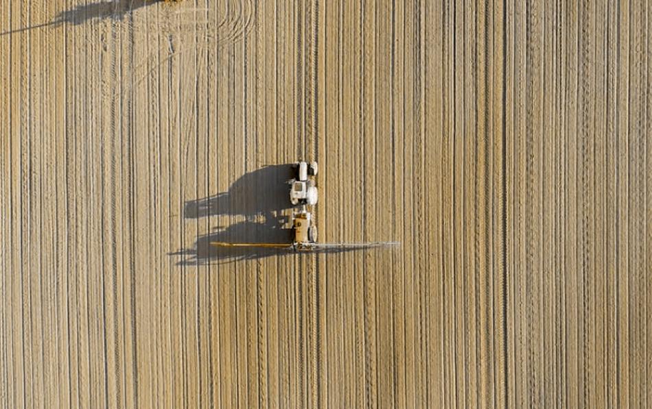 El monocultivo de soja se expande también en Europa como alimento de la ganadería industrial