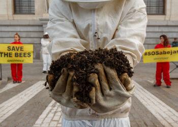 Greenpeace denuncia que el borrador del Plan de Polinizadores no contempla medidas ambiciosas para reducir el uso de los plaguicidas