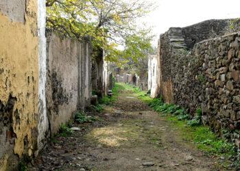 Unidas Podemos presenta medidas para el medio rural en Sevilla