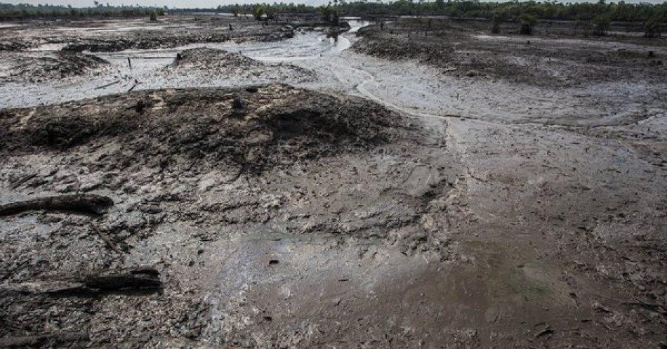 Amigos de la Tierra demanda a Shell por su contribución al cambio climático