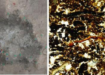 Las hogueras prehistóricas de Alicante hablan de cómo vivían los neandertales