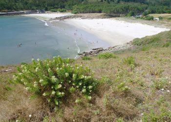 La protección de la naturaleza le gana la partida a la Fundación Eduardo Pondal y a su Festival V de Valarés