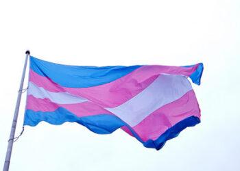 Marea Arcoiris denuncia el bloqueo del PP y Cs a la Ley Trans