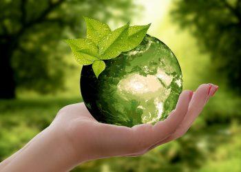 Amigos da Terra fai as súas propostas ambientais para o próximo 26 de maio
