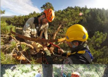 Ecologistas Extremadura pregunta sobre la situación en el proceso en su proceso de trámite del plan de recuperación de la cigüeña negra en Extremadura