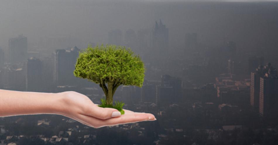 Esquerda Unida considera imprescindible modificar o sistema productivo para evitar a situación de colapso enerético e ambiental que ameaza o planeta