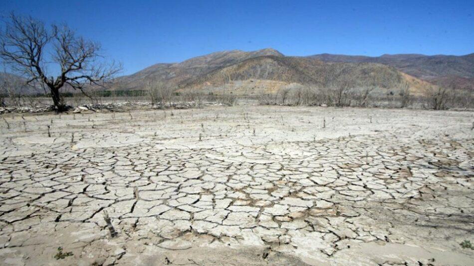 La Universidad Complutense de Madrid declara la emergencia climática