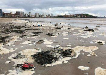 Coordinadora Ecoloxista d'Asturies: «La peligrosa contaminación química de la bahía de Gijón»