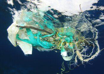 Fundación Global Nature (FGN) reivindica la importancia del consumo responsable  y ofrece opciones para evitar el uso del plástico en el día a día