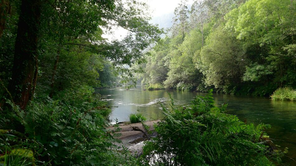 O ambientalismo galego clama contra a nova Lei de Patrimonio Natural do PP