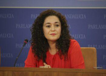 """Adelante Andalucía, tras el incendio de Indorama: """"Hay empresas que ponen sus beneficios por delante de la seguridad"""""""