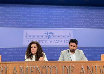"""Nieto ve «descuidada y desatendida» por el Gobierno andaluz la medicina preventiva y alerta del peligro del """"creciente movimiento antivacuna"""""""