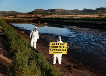 Activistas de Greenpeace entran en la macrogranja de porcino más contaminante de España para pedir el fin de la ganadería industrial
