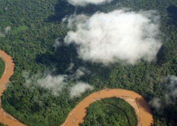 El acuerdo comercial entre la UE y Mercosur agravará la crisis climática y de biodiversidad