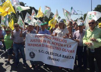 Miles de olivareros protestan por «el robo» en el precio del aceite, que se sitúa actualmente por debajo de los costes de producción