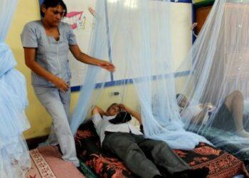 Epidemia de dengue en Honduras colapsa red hospitalaria
