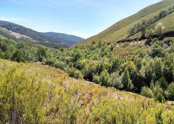 Denuncian que la nueva Ley de Patrimonio Natural desarrollada por el PP impedirá la creación de nuevos parques naturales en Galicia