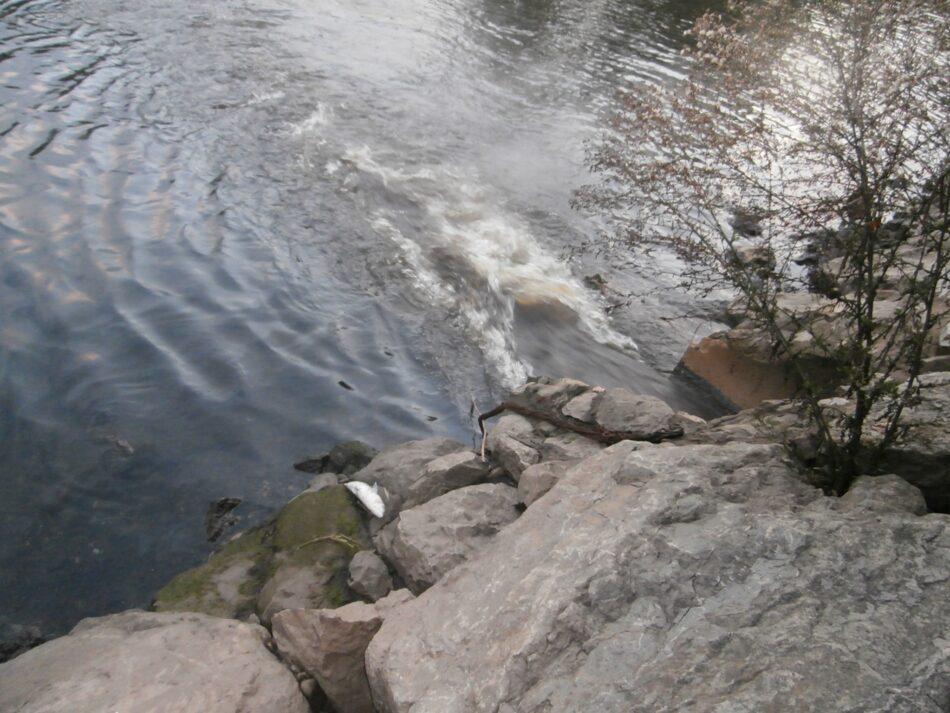 El Principado autoriza la depuradora de aguas amoniacales de Avilés sin información pública