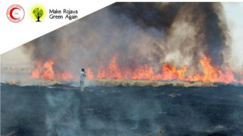 Campaña por las tierras quemadas de los campesinos kurdos: «Make Rojava Green Again»