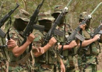 Venezuela. Nueve paramilitares colombianos fueron capturados con explosivos y municiones