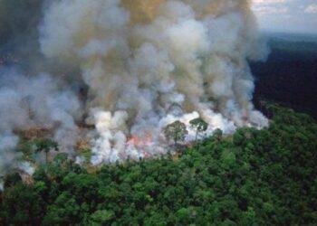 El humo por los incendios en la Amazonía llega a Argentina